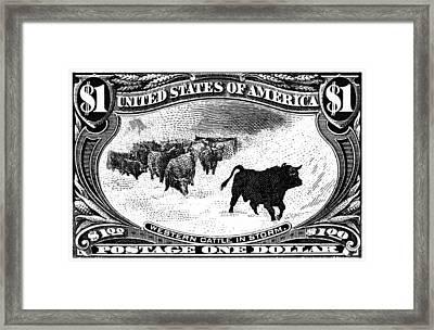 1898 Western Cattle In Storm Stamp Framed Print