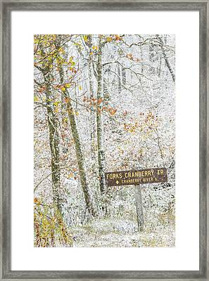 Cranberry Wilderness Framed Print