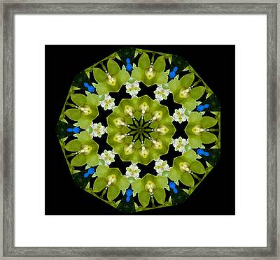 Framed Print featuring the photograph 19-petaled Lucky Shamrock by Baha'i Writings As Art