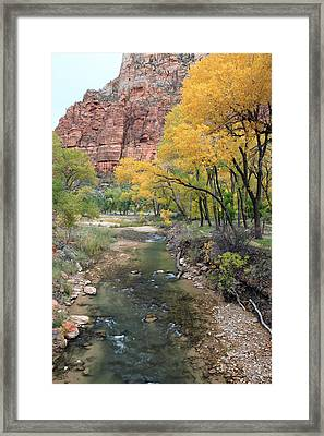 Zion National Park In Autumn Framed Print