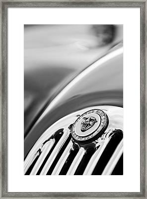 1952 Jaguar Hood Ornament2 Framed Print