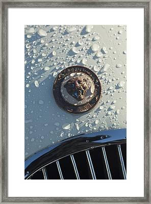 1954 Jaguar Xk120 Roadster Hood Emblem Framed Print by Jill Reger