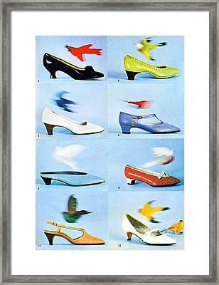 1960 70 Ladies Shoes Advertisement 2 Framed Print by R Muirhead Art