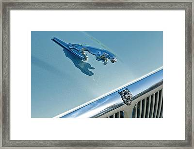 1995 Jaguar Xj6 Sedan Hood Ornament Framed Print by Jill Reger