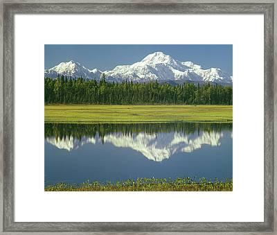 1m1325 Mt. Hunter And Mt. Denali Framed Print