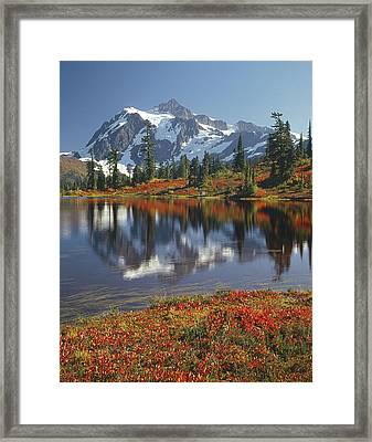 1m4208 Mt. Shuksan And Picture Lake Framed Print