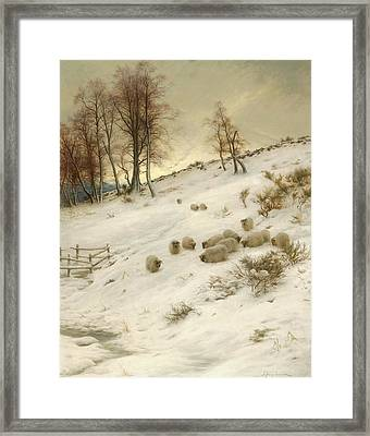 A Flock Of Sheep In A Snowstorm Framed Print by Joseph Farquharson