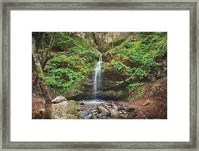 A Little Bit Of Love Framed Print