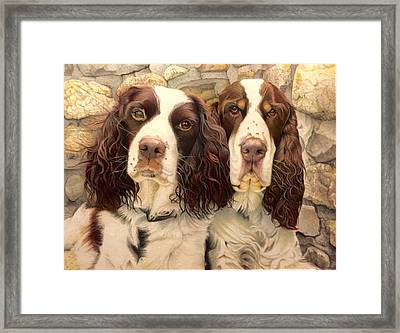 Abby And Romeo Framed Print