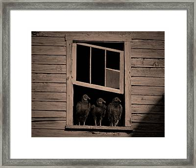 Almost Paneless Framed Print