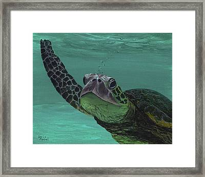 Framed Print featuring the painting Aloha From Maui by Darice Machel McGuire