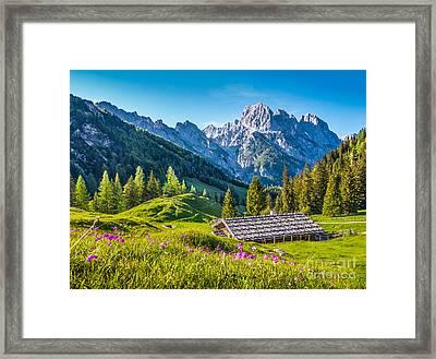 Alpine Beauty Framed Print