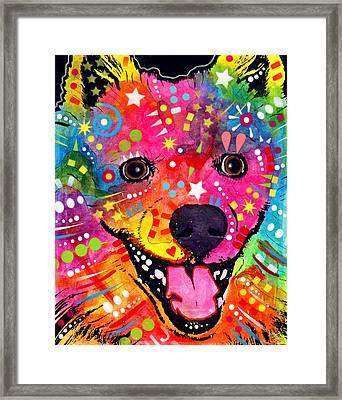 American Eskimo Dog Framed Print by Dean Russo