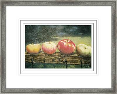 Apples On A Rail Framed Print