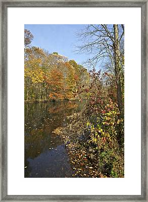 Autumn Colors On The Canal Framed Print