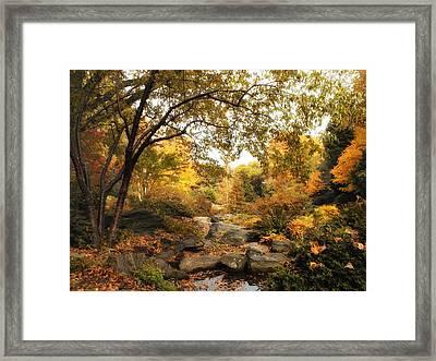Autumn Garden Framed Print by Jessica Jenney