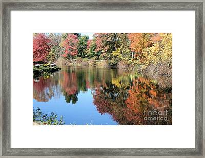 Autumn In New England Framed Print by Amy Holmes