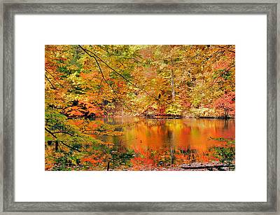 Autumn Reflections Framed Print by Kristin Elmquist