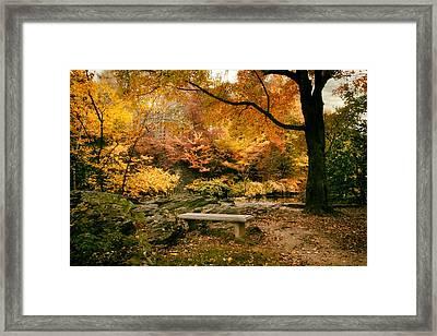Autumn Respite Framed Print by Jessica Jenney