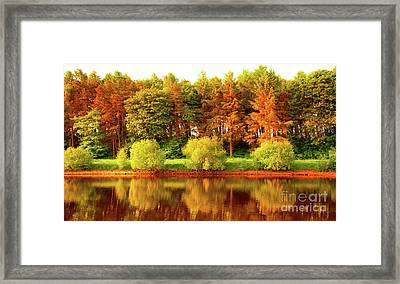 Autumn Framed Print by Svetlana Sewell