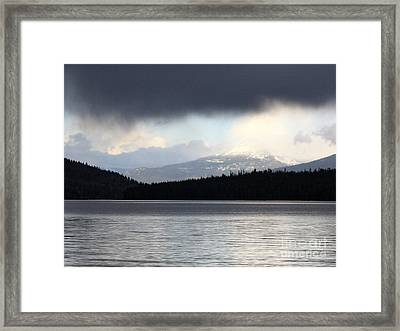 Balance In Nature Framed Print