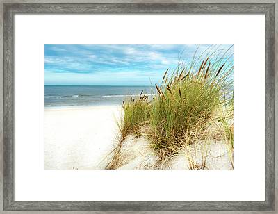 Framed Print featuring the photograph Beach Grass by Hannes Cmarits