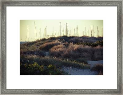 Beach Houses And Dunes Framed Print