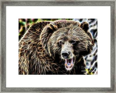 Bear Collection Framed Print by Marvin Blaine