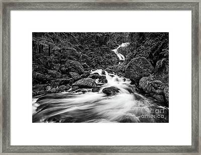 Beautiful Bunch Creek Falls In The Olympic National Park Framed Print by Jamie Pham