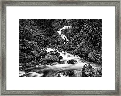 Beautiful Bunch Creek Falls In The Olympic National Park Of Wash Framed Print
