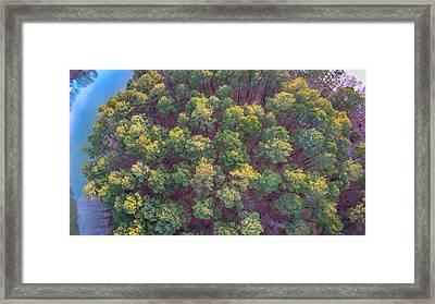 Beautiful Sunset Over Lake Wylie South Carolina Framed Print by Alex Grichenko