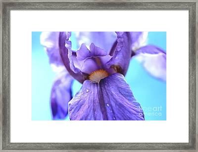 Beauty Within Framed Print by Krissy Katsimbras