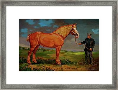 Belgian Draft Horse. Framed Print by Alan Carlson