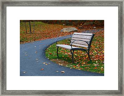 Bench On The Walk Framed Print
