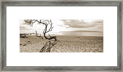 Big Beach Maui Hawaii Framed Print