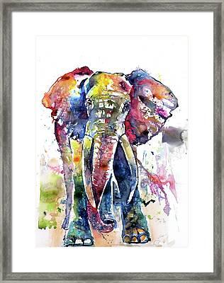 Big Colorful Elephant Framed Print