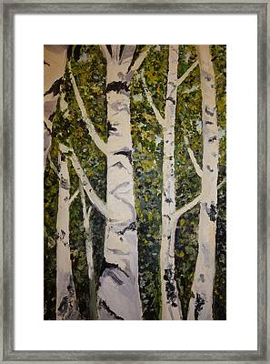 Birch Merengue Framed Print by Rauno  Joks