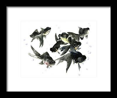 Animals And Feng Shui Art Framed Prints