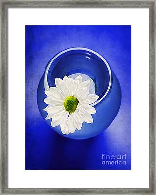 Blue Framed Print by Darren Fisher