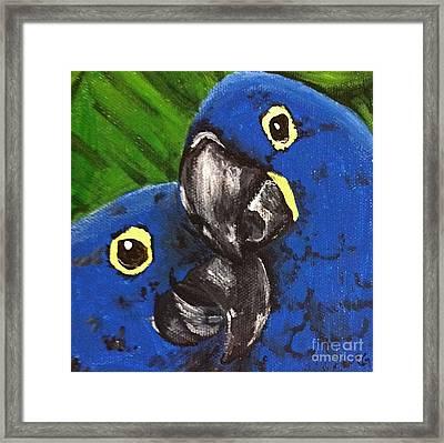 2 Blue Framed Print