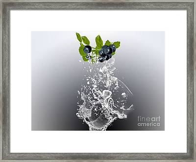 Blueberry Splash Framed Print