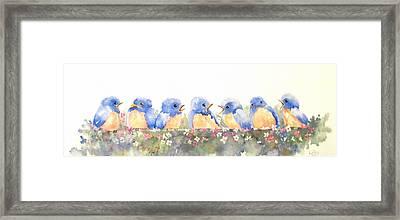 Bluebird Friends Framed Print