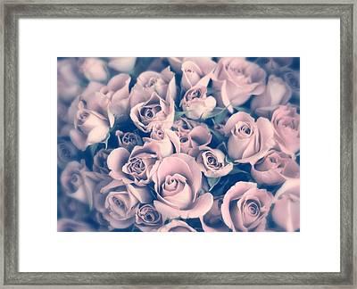 Blush Rose Framed Print by Jessica Jenney