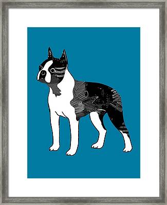 Boston Terrier Collection Framed Print