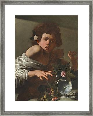 Boy Bitten By A Lizard Framed Print