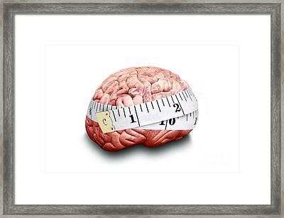 Brain Size, Conceptual Image Framed Print by Victor de Schwanberg