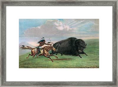 Buffalo Hunt Framed Print by George Catlin