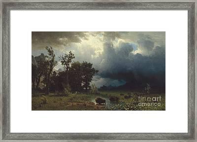 Buffalo Trail  The Impending Storm Framed Print by Albert Bierstadt
