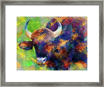 Bull Framed Print by Elena Kosvincheva