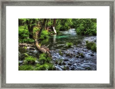 Burney Creek Framed Print